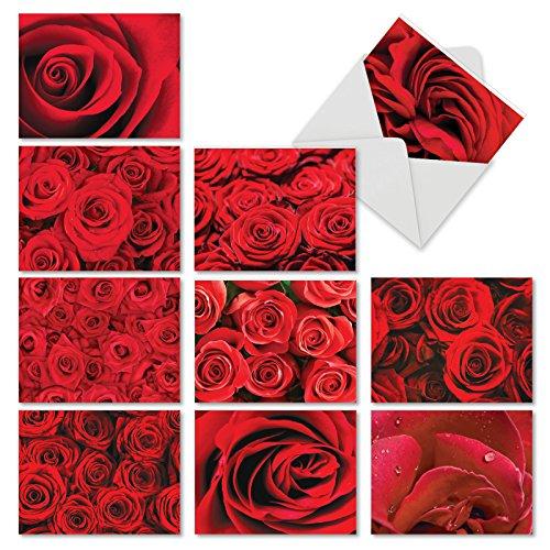 m3088vdg-b1X 10Rosen sind rot: 10verschiedene Valentine 's Day Note Karten mit Bilder der Reichen Ruby Rot Rosen in Full Bloom, mit Umschlägen. (Die Valentine Für Karten Schule)