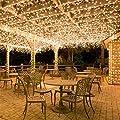 Kitlit Lichterkette LED 100er Innen Warmweiß Romantisch Strombetrieben Transparent EU-Stecker für Zimmer Bett Hochzeit Party Schlafzimmer Weihnachten Tannenbaum Beleuchtung 220V-8 Funktiontyp-Memory-Verlängerbar