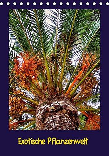 Exotische Pflanzenwelt (Tischkalender 2018 DIN A5 hoch): Fremdartige Pflanzen (Monatskalender, 14 Seiten ) (CALVENDO Natur) [Kalender] [Apr 01, 2017] Schneller, Helmut