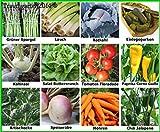Traumgarten2014 Gemüse Set 1: Mix Tomate Paprika Chili Lauch Einlegegurken