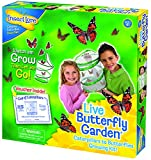 from Insect Lore Insect Lore Butterfly Garden Model 10416
