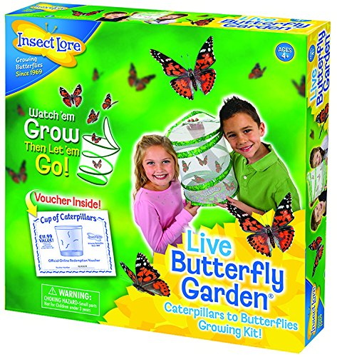 Insect Lore Butterfly Garden - The Web Store