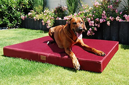 tierlando® Orthopädische Hundematratze HUGO ORTHO PLUS | L 100 x 80 cm | Anti-Haar Polyester | Braun - 6