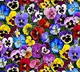 Fat Quarter Lovely Blumen Blumen Baumwolle Quilten Stoff Elizabeth 's Studio