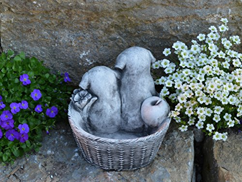 gartendekoparadies.de Massive Steinfigur Pflanzkörbchen mit Hunde Welpen aus Steinguss frostfest