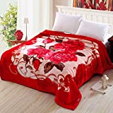 BDUK Winter dicke Decke Raschelmaschinen double coral Fleece Decke ehe Winter decken decken bettdecken, 180x220cm,238 Rot