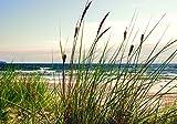 FORWALL VLIESFOTOTAPETE Fototapete Tapete Wandbild Vlies   Welt-der-Träume  Küsten-Gras   V4 (254cm. x 184cm.)   Photo Wallpaper Mural 10669V4-AW   Natur Landschaft Maritim See Meer Ozean Gras
