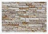 W-012 Wand-Design Verblender Travertin Steinwand - 1 Muster - Naturstein Fliesen Lager Verkauf Stein-Mosaik Herne NRW