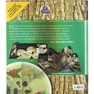 Árboles: De la semilla al imponente bosque (Infinity (oniro))