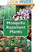 #6: Mosquito Repellent Plants