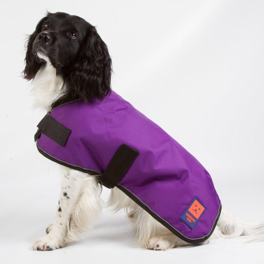 9265fa213fe1 ginger ted shower waterproof dog coat - 41klgWZYk8L - Ginger Ted Shower Waterproof  Dog Coat