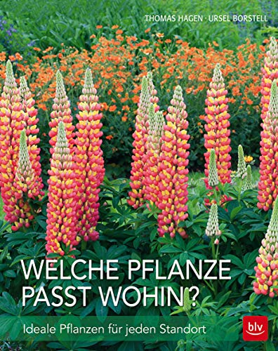 Blumenzwiebeln Blumenzwiebeln pflanzen