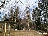 Volierennetz - Breite 20,0m x Länge wählbar, 10,0cm, europ. Fertigung, Geflügelnetz