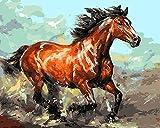 CaptainCrafts Neu Malen nach Zahlen 16x20' für Erwachsene Anfänger Kinder, Kinder Leinwand - Laufen Rot Erwachsene Pferd (Mit Rahmen)
