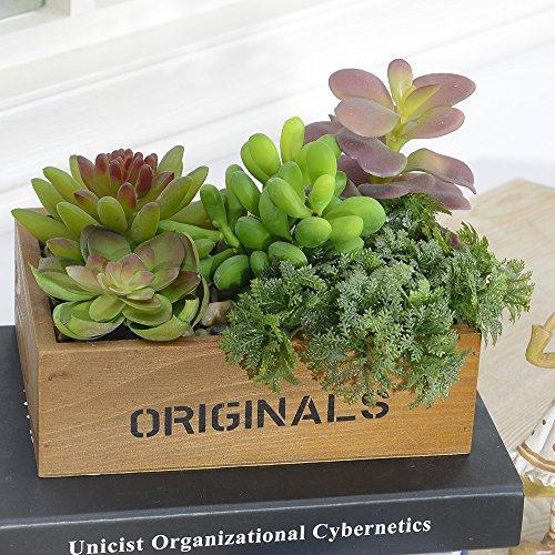 Künstliche gemischte Sukkulenten Pflanzen Garten Sukkulenten Gras Wüste Künstliche Pflanzen Landschaft für Büro Home Decor Handwerk Making mit Holzrahmen, Style2