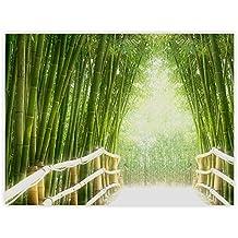Asiatische Bilder Auf Leinwand suchergebnis auf amazon de für bambuswald leinwand