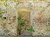 1art1 63843 Mauern - Romantische Garten-Mauer Poster Kunstdruck 80 x 60 cm
