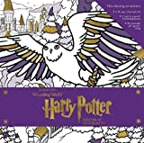 Harry Potter: Winter at Hogwarts: A Magical Colouring Set (J.K. Rowling's Wizarding World)