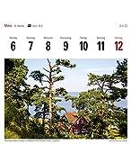Ostseeküste – Kalender 2017: Sehnsuchtskalender, 53 Postkarten - 8