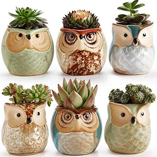 sun-e 6.35 cm gufo vaso ceramica smaltata base set succulente vaso per piante cactus vaso per fiori vaso per fiori fioriera contenitore bonsai vasi con un buco perfetto idea regalo 6 in set