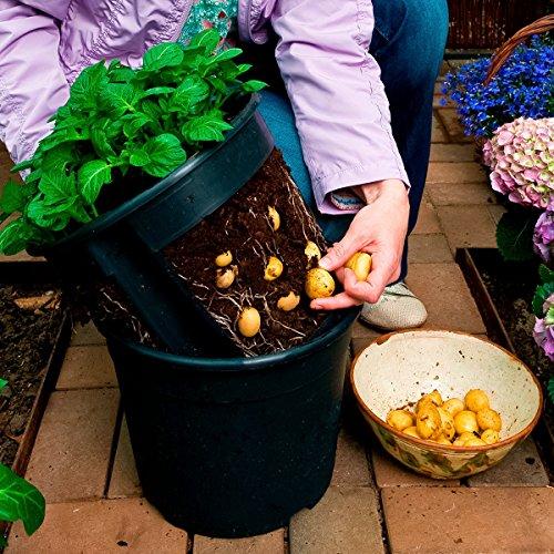 Kartoffel-Pflanztopf PotatoPot®