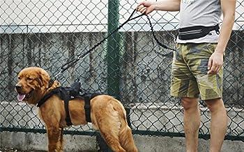 1t Onetigris Jogging Hundeleine Mit Hüftbeutel2handgriffenbungee-leine Reflektierende Nähte ,115 Cm-175 Cm (Schwarz) 4
