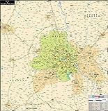 Delhi Wall Map - Synthetic (68.5 x 76 cm)