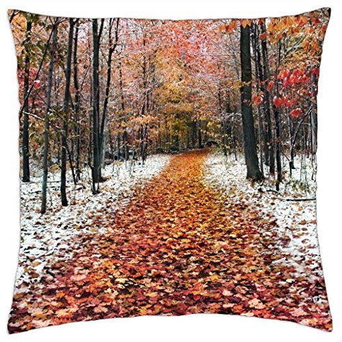 two-seasons-throw-pillow-cover-case-18-x-18