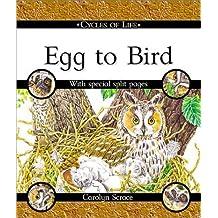 Egg to Bird (Cycles of Life (Taschenbuch Franklin Watts)) by Scrace, Carolyn, Franklin, Carolyn (2002) Taschenbuch