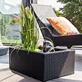 miniteich bauen miniteich im fass anlegen. Black Bedroom Furniture Sets. Home Design Ideas