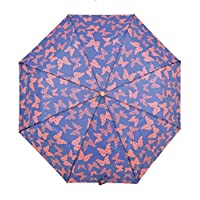 Ladies Supermini Butterfly Print Compact Umbrella