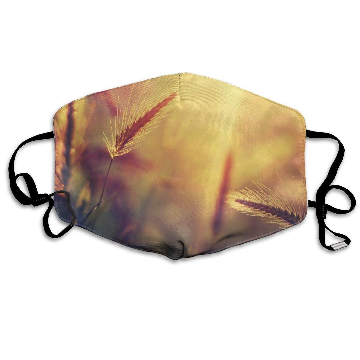 Daawqee Máscara de Boca, Summer Wheat Sunset Adult Fashion Mascarilla Washable Safety 100% Polyester Comfortable Breathable Health Half Face Masks