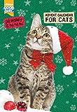 'Pawsley' Katzen-Adventskalender