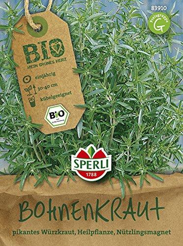 BIO-Bohnenkraut Cyrano BIO Satureja hortensis