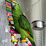MEWTOGO 1.2 M Colorful Wooden Pet Ladder Bird Toy and a Swing - 18 Steps Rainbow Hanging Climbing Bridge for Parrot Training 10