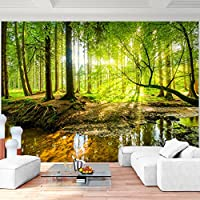Schön Fototapete Wald 352 X 250 Cm Vlies Wand Tapete Wohnzimmer Schlafzimmer Büro  Flur Dekoration Wandbilder XXL