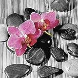 Artland Qualitätsbilder I Glasbilder Deko Glas Bilder 30 x 30 cm Botanik Blumen Orchidee Foto Grau A5KF Asiatische Komposition II - Orchideen