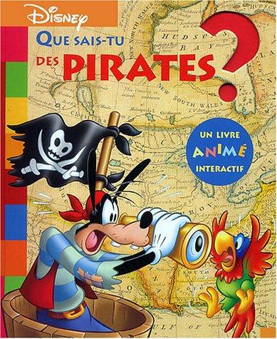 Que sais-tu des pirates ?