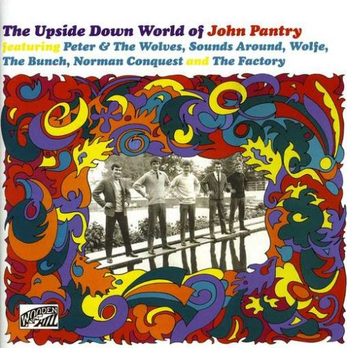 Upside Down World of John Pantry -