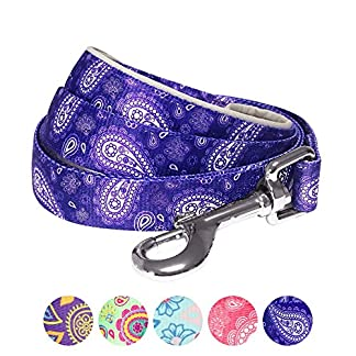 Blueberry Pet Paisley Flower Print Dog Lead with Neoprene Padded Handle, Matching Collar & Harness Available Separately 61AClG97wQL
