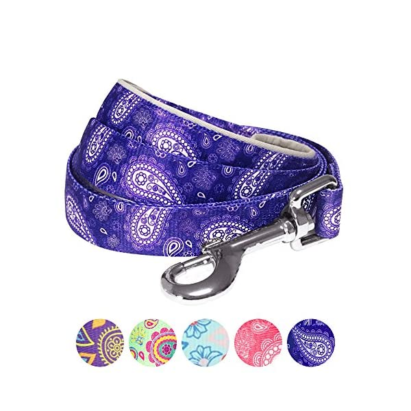 Blueberry-Pet-Paisley-Flower-Print-Dog-Lead-with-Neoprene-Padded-Handle-Matching-Collar-Harness-Available-Separately