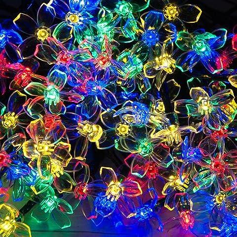 50 LED Colorido Flor Solar luz de hadas por SPV Luces: Las luces solares y especialistas en iluminación (libre 2 años de garantía