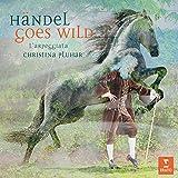 Händel Goes Wild (Ltd.Deluxe Edition) - Pluhar
