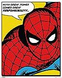 Spiderman Mini Poster taux + accessoires pas de cadre