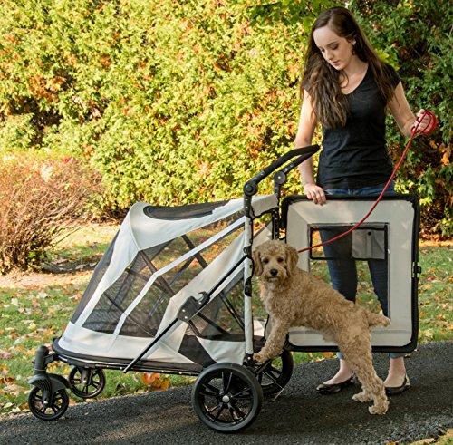 Pet Gear No-Zip Expedition Zipperless Entry Boysenberry Pet Stroller 2