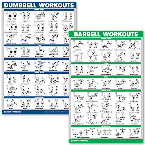 QuickFit Kurzhanteltraining und Langhantel-Übungsposter-Set - laminiertes 2-Diagramm-Set - Kurzhantel-Übungen & Langhantel-Workouts, Laminated, 18