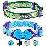 Blueberry Pet Doppelpack Mix & Match City Chic Designer Hundehalsband mit Fliege-Deko, S