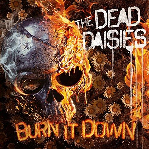 Burn It Down (LP Rouge Gatefold + CD)