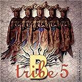 B-Tribe 5