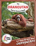 The Orangutan Fact and Picture Book: Fun Facts for Kids About Orangutans (Turn and Learn)